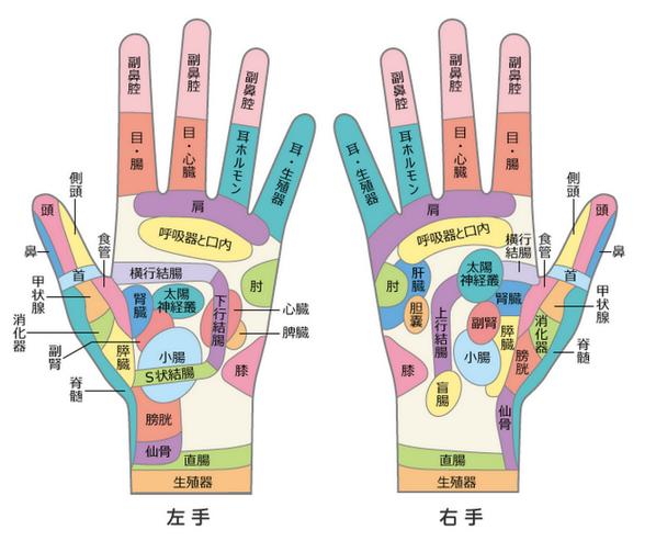 手のひらのツボの位置