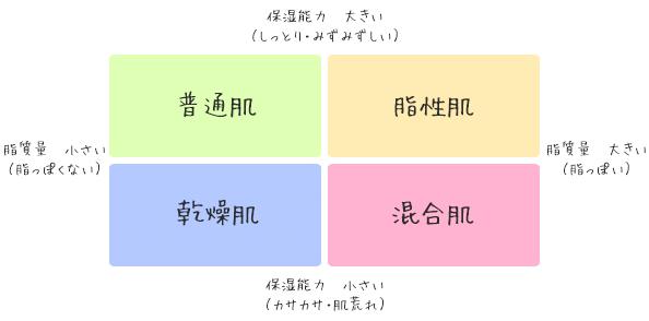 肌質の分類