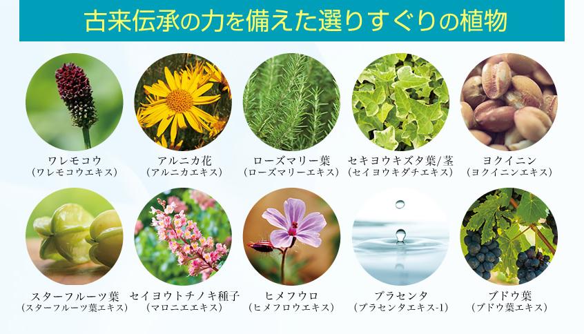 ノアンデの天然植物由来成分