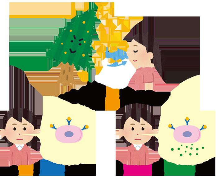 花粉症のメカニズム2