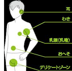 男性のアポクリン汗腺の場所